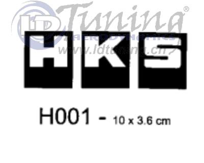 Race Sticker_H001